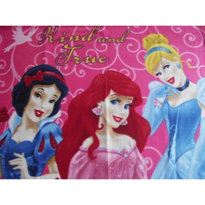 Princessina Hercegnők Disney pléd takaró 120x150cm